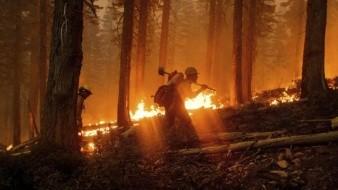 Incendio en California amenaza cultivos legales de marihuana