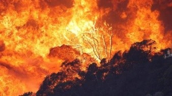 Evacuan un hospital por nuevo incendio forestal en Napa, California