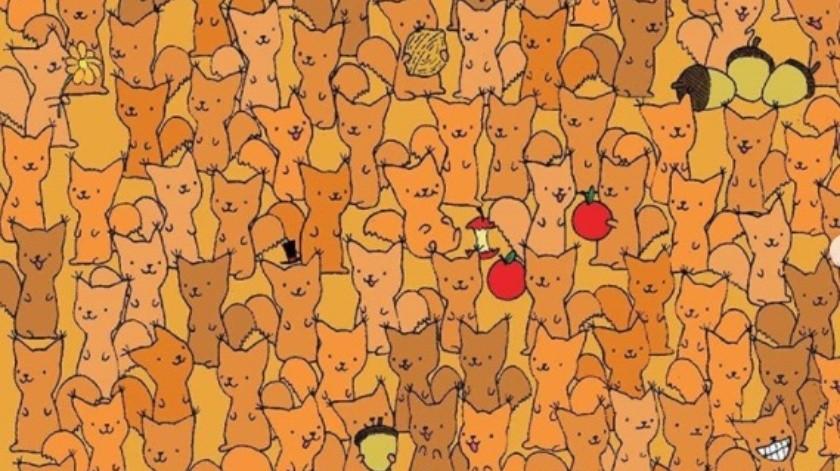 Reto Visual: Encuentra al ratón  entre las ardillas(Tomado de la red)