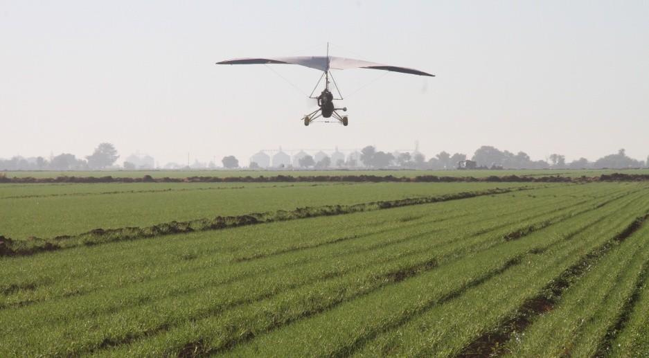 Requiere el agro de Sonora más recursos en presupuesto de 2021: Estado