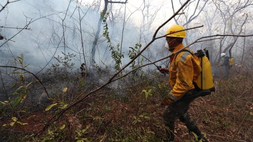 Las altas temperaturas, la baja humedad y las escasas probabilidades de lluvia dibujan un escenario desfavorable para el control de los 34 incendios activos en la región(EFE)