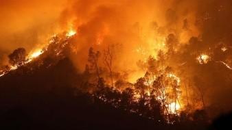 Incendios arrasan la cifra récord de 1.62 millones de hectáreas en California