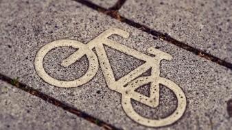 El hombre y los restos de las bicicletas yacían a unos 10 metros del sitio donde fue encontrada la estudiante.