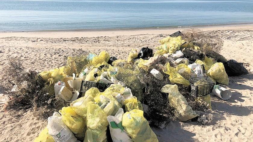 Poco más de una tonelada de basura retiraron grupos ecologistas y ciudadanos de la playa de Santa Rosa y Bahía de Kino; encontraron hasta refrigeradores oxidados.(Cortesía)