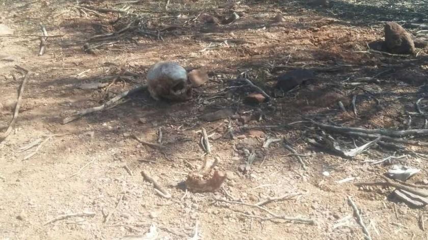 Los restos humanos fueron llevado al Semefo(Archivo GH)