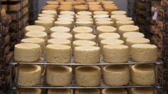 Los productores de queso y yogures venderán hasta que cumplan con la norma