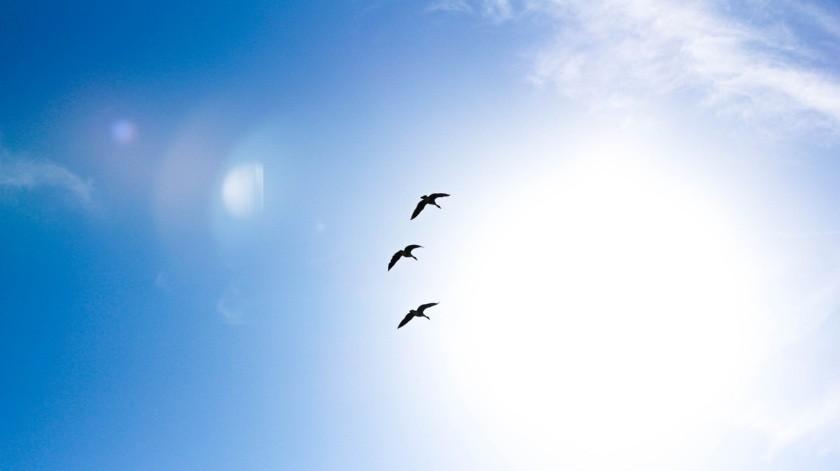 En estado de Sonora, continuarán fluctuando las temperaturas máximas alrededor de los 40°C(Pixabay)