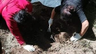Localizan Rastreadoras de CO restos óseos de una persona en fosa clandestina de Bataconcica