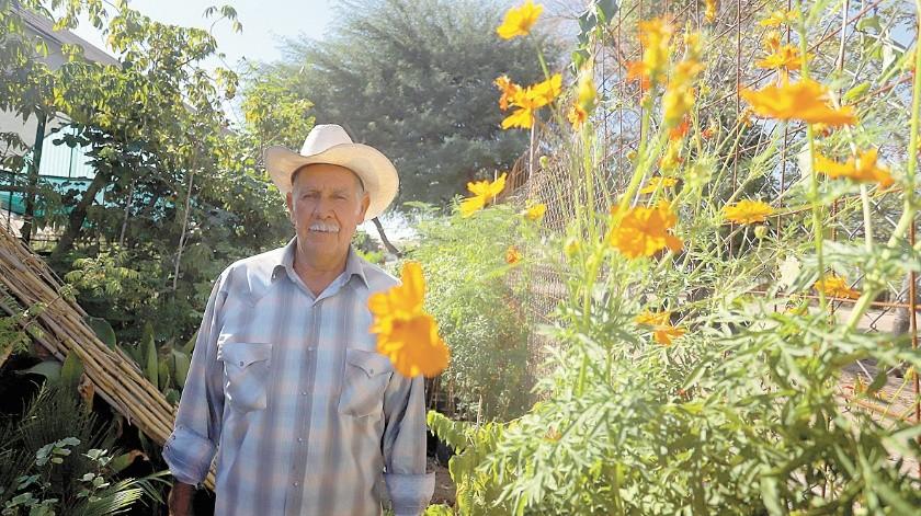 Don Carlos León Fernández no sembró las coloridas flores para el Día de muertos por la pandemia; tenía 25 años que en su vivero ofrecía estas plantas.(Anahí Velásquez)
