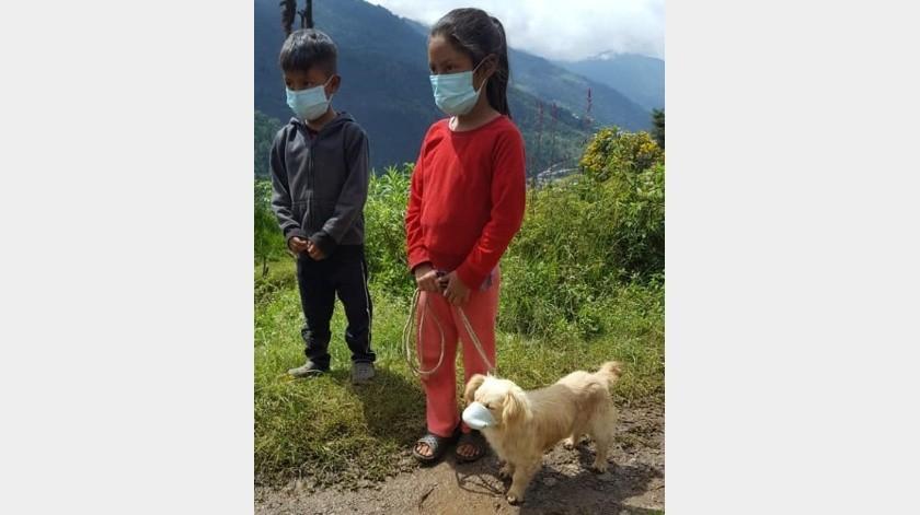Llevan a perrito a jornada de vacunación con cubrebocas(Tomada de la red)