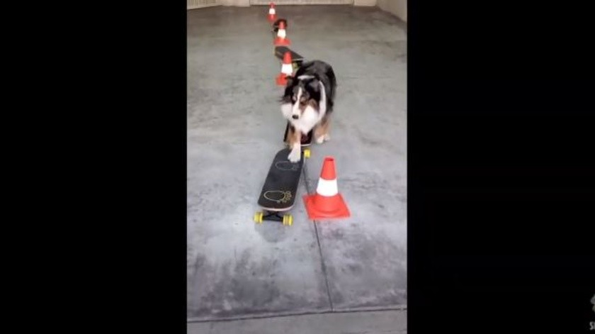 Rush sorprende con sus movimientos en patineta(YouTube)