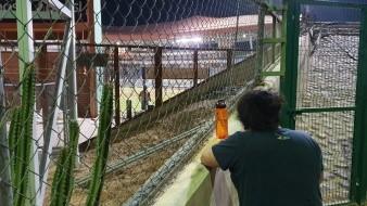 Afición de Naranjeros sigue juego desde túnel en estadio Sonora