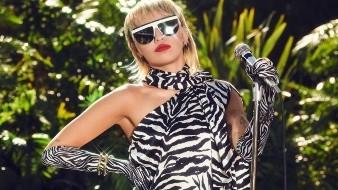 Miley dijo que el objeto era una especie de máquina quitanieve con un arado en la parte delantera y de color amarillo brillante, además, estaba volando.