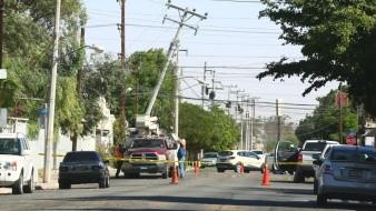 Cortes de energía, caída de árboles y cortocircuitos por vientos en Mexicali