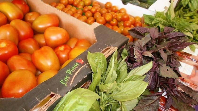 El tomate que se produce en San Quintín se comercializa en Estados Unidos, principalmente.