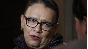 Periodista de profesión, Rosa Icela Rodríguez Velázquez, estudió en la Escuela Carlos Septién García y comenzó su carrera desde el ámbito político, como coordinadora de Comunicación Social en la Asamblea Legislativa del Distrito Federal