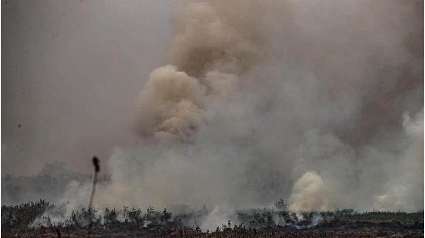 En el Pantanal, el mayor humedal del planeta y que Brasil comparte con Bolivia y Paraguay, fueron 2.856 focos de incendio en el décimo mes del año, ante los 2.430 que se registraron en el mismo período de 2019.(EFE)
