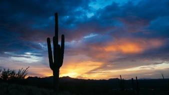 Arizona es uno de los estados considerados claves que pueden cambiar la elección.