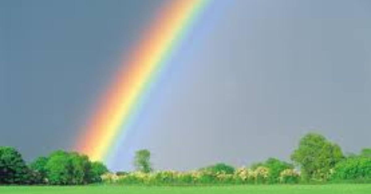 Familia encuentra el final del arcoíris | EL IMPARCIAL