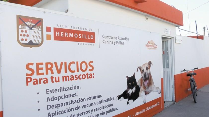 Hay 15 mascotas disponibles para un nuevo hogar en el Centro de Atención Canina y Felina(Banco Digital)