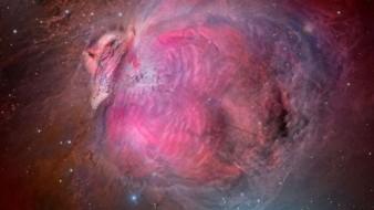 Capta la NASA nebulosa con forma de pavo