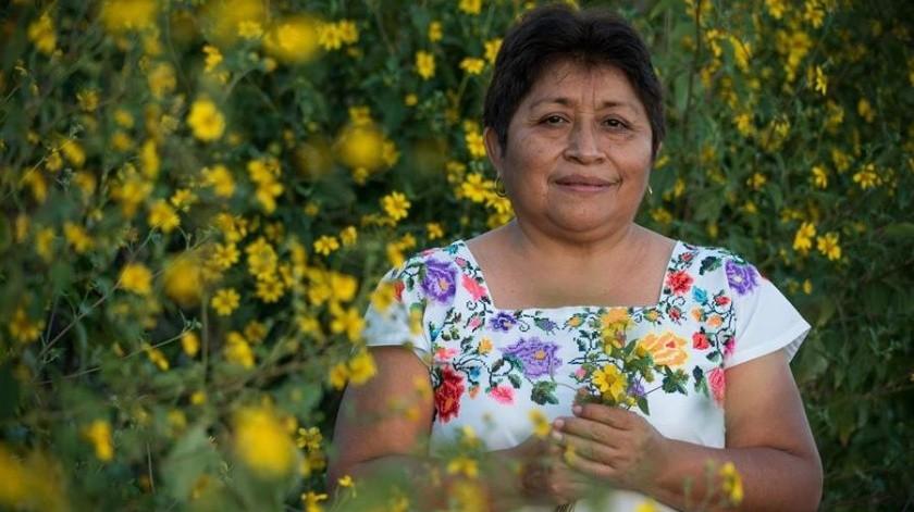 """Leydy Pech: mexicana gana el Nobel de Medioambiente como """"guardiana de las abejas""""(EFE)"""