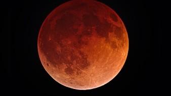 Noviembre se despide con el último eclipse lunar del año