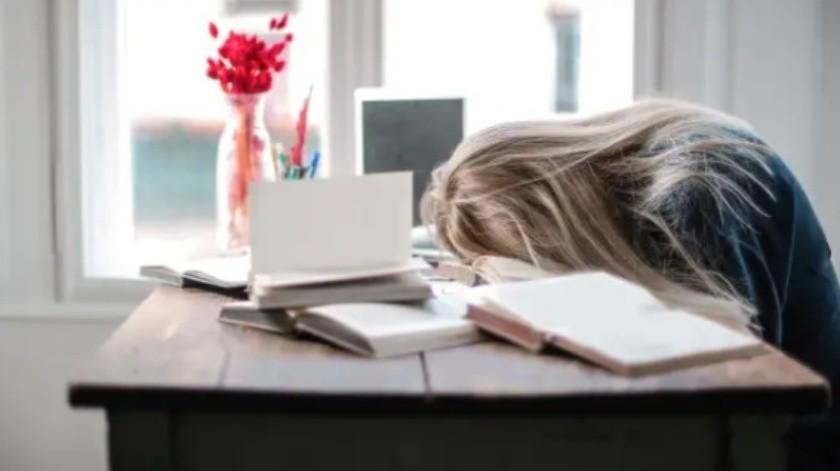 Nuevo estudio revela que hay 6 tipos de personas según sus horas de actividad(Andrea Piacquadio / Pexels)