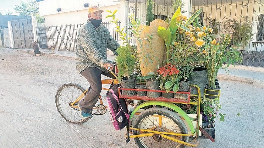 Epitacio Antonio Cruz Amparano, de 57 años, vende todo tipo de plantas.(Anahí Velásquez)