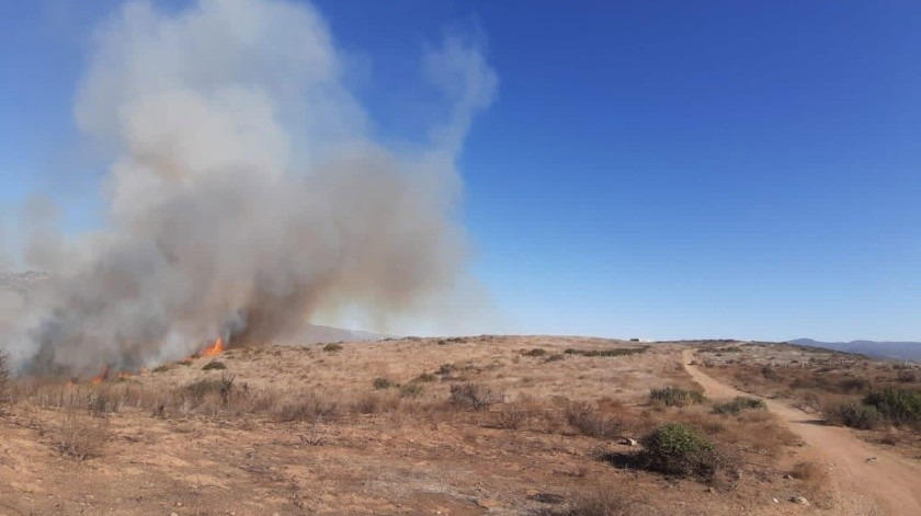 En forma general hubo más de 8 incendios en cerros (pastizales).(Cortesía)