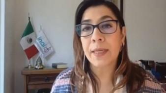 Josefina Román Vergara, comisionada delINAI