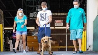 ¡Heroico! Animalistas salvan perritos de carnicerías en China