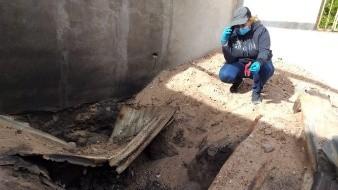 Madres Buscadoras hallan fosa enorme con al menos 8 restos humanos en San José