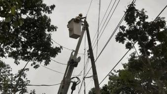 Confirma CFE recuperación 100% carga eléctrica tras apagón nacional
