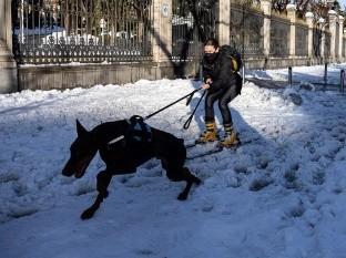 Más de la mitad del territorio español se encuentra en alerta roja con más nieve pronosticada para este sábado.