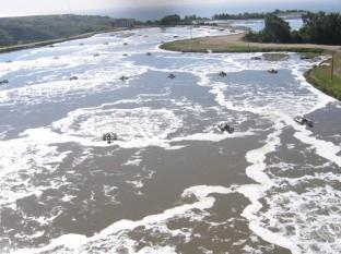 Realizarán licitación para rehabilitar planta tratadora de Punta Bandera