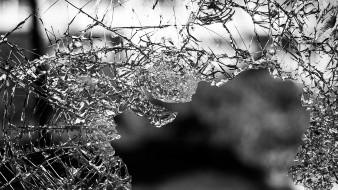 Un sujeto estaba causando daños en un domicilio de la colonia Héroes