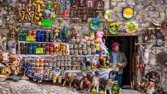 Los pronósticos del empresariado contrastan con los de la Secretaría de Hacienda y Crédito Público (SHCP) del Gobierno de México, que estima un decremento de 8 % en 2020 con un rebote de 4.6 % en 2021.