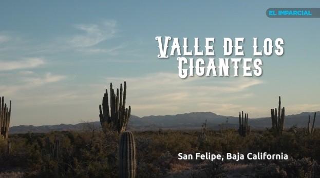 Valle de los Gigantes, atardeceres de la Baja